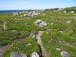 Каменный лабиринт на Большом Заяцком острове.